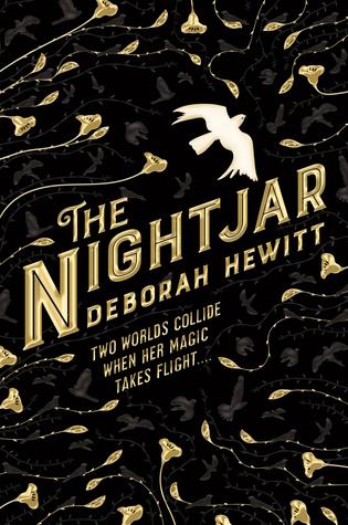 The Nightjar by Deborah Hewitt book cover